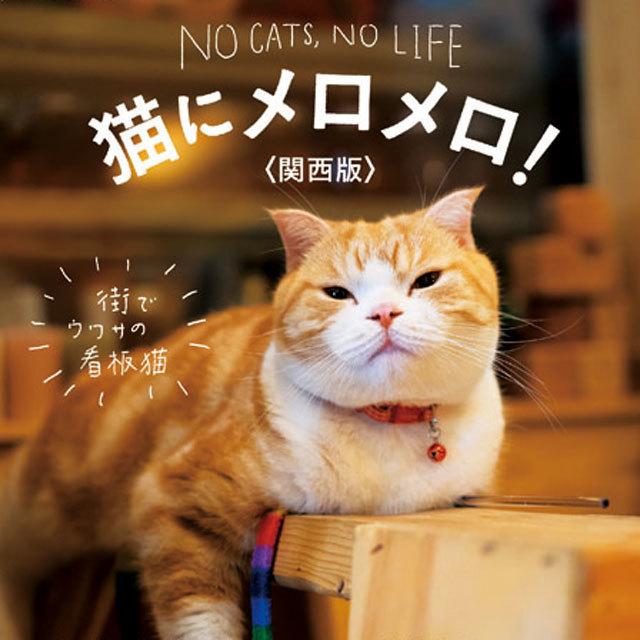 株式会社 京阪神エルマガジン社 Lmaga Mook