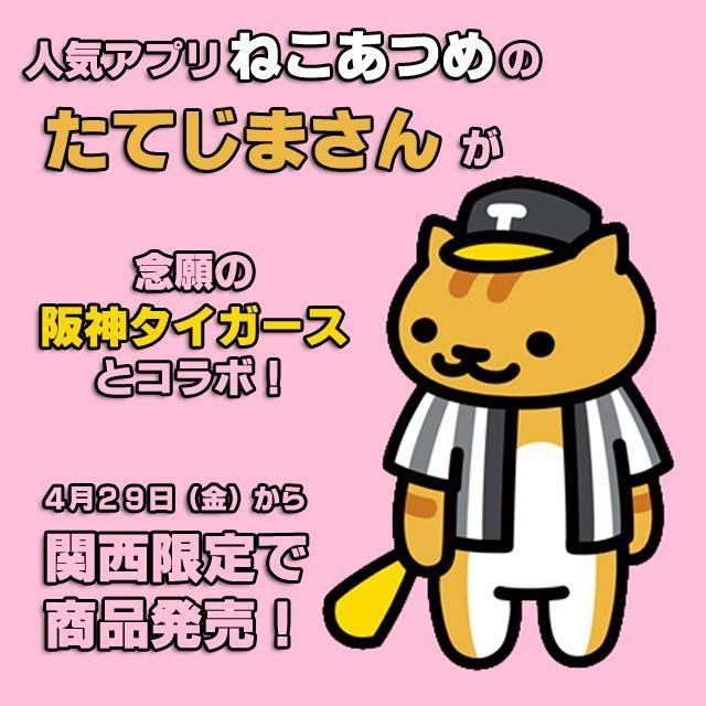 1500万ダウンロード突破の人気アプリケーション「ねこあつめ」(株式会社Hit-Point)に登場する「たてじまさん」とプロ野球球団「阪神タイガース」のコラボレーション商品が発売されます。たてじまさんは阪神タイガースの熱狂的ファンであることから今回のコラボレーションが決定。コラボレーションイラストには、阪神タイガースのユニフォームと帽子を着用した猛猫たてじまさんがメガホンを持ち応援する姿、グローブを持ちボールを待つ姿、「ねこあつめ」ゲーム内でおなじみのボールを見つめる姿、合計3種をご用意しております。たてじまさんはボールをただずっと見つめています。その先には憧れの球団阪神タイガース阪神タイガースとのコラボレーションが決まったたてじまさんは阪神タイガースのユニフォーム、帽子を着用し、「ねこではなくトラになったこと」を全力で喜び甲子園球場で阪神タイガースを応援するのでありました。