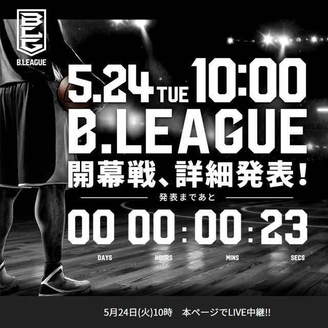 JAPAN PRO BASKETBALL