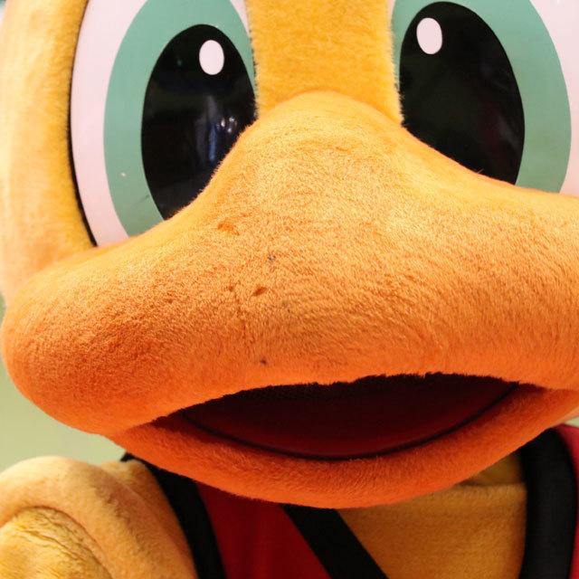 SAN-EN NEOPHOENIX vs 横浜ビー・コルセアーズ 2016.10.08-09 豊橋市総合体育館