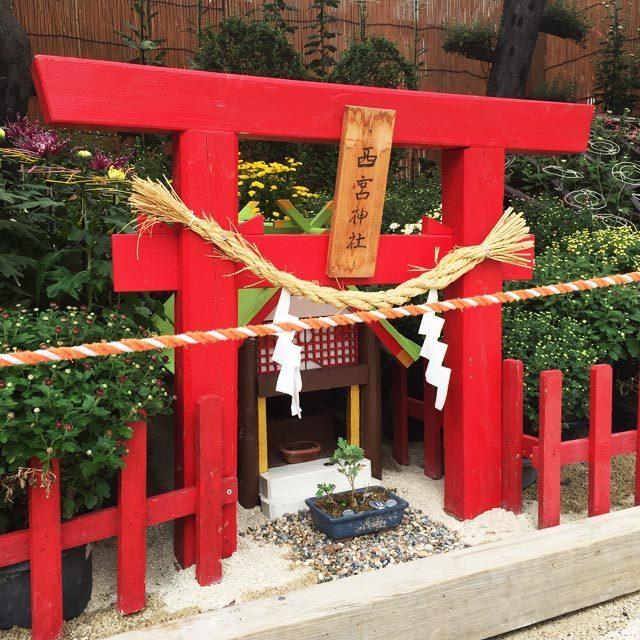 えびす宮総本社 西宮神社 西宮菊花展覧会