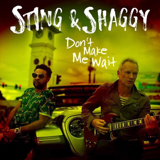 スティング&シャギー 44/876