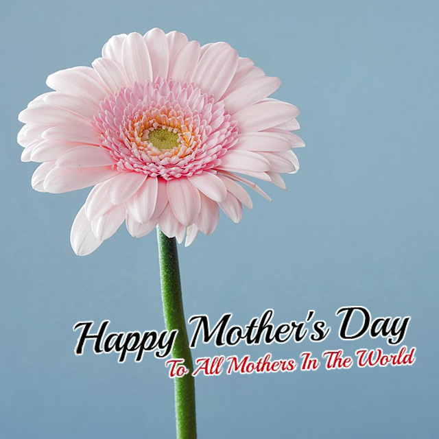 母の日 ありがとう