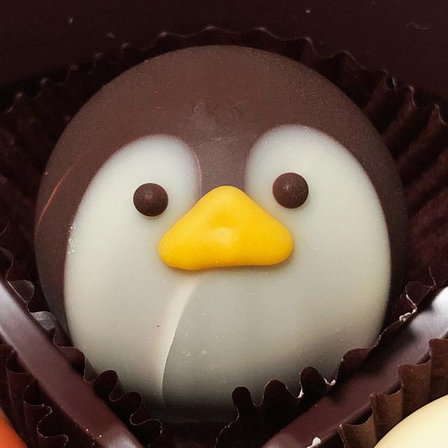Goncharoff Animal Chocolat