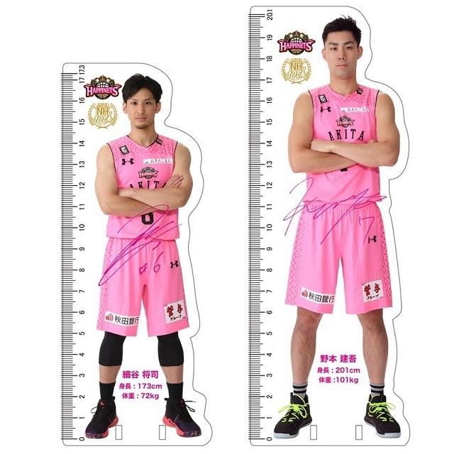 秋田ノーザンハピネッツ 身長1/10サイズ定規